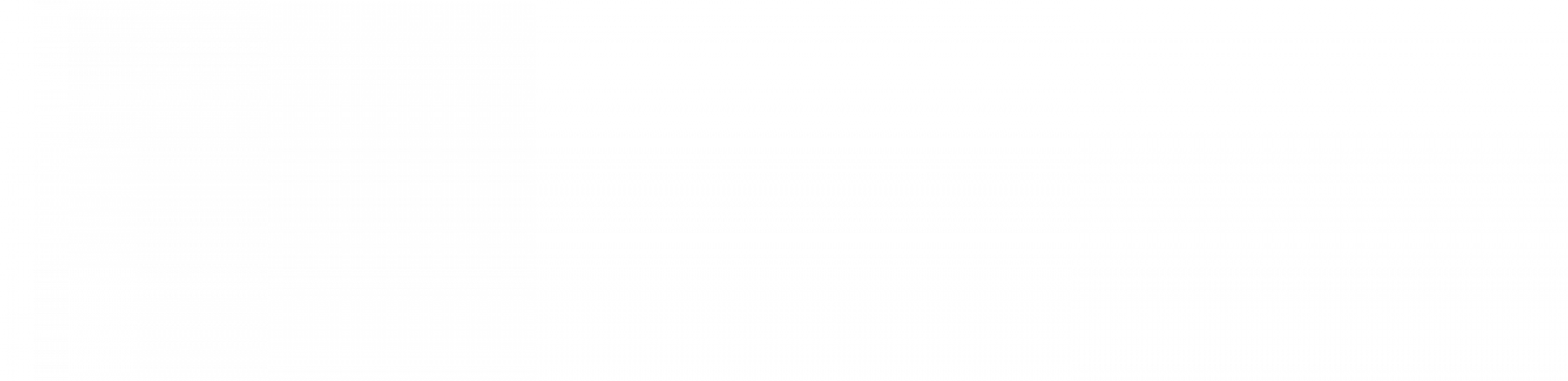 2019 CES Logo – Solution White background